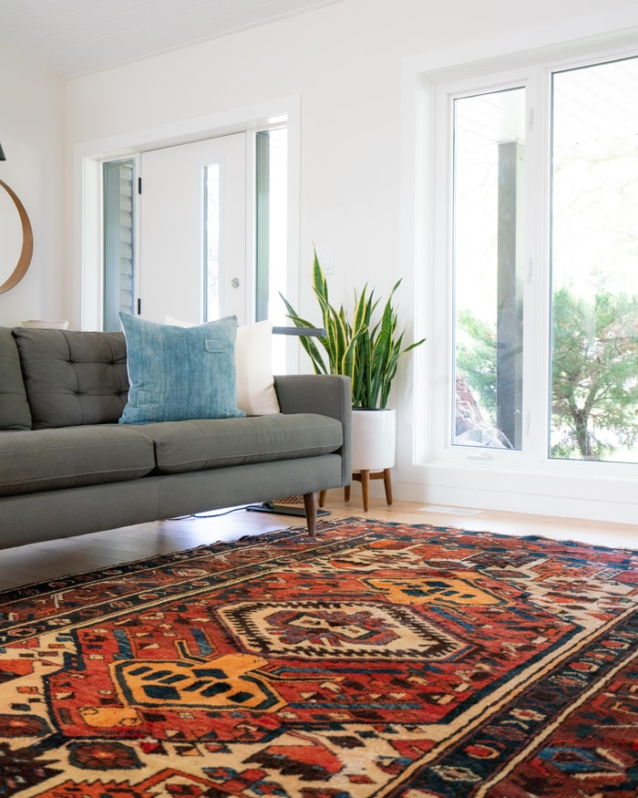 A Beginner's Guide to DIY Carpet Cleaning