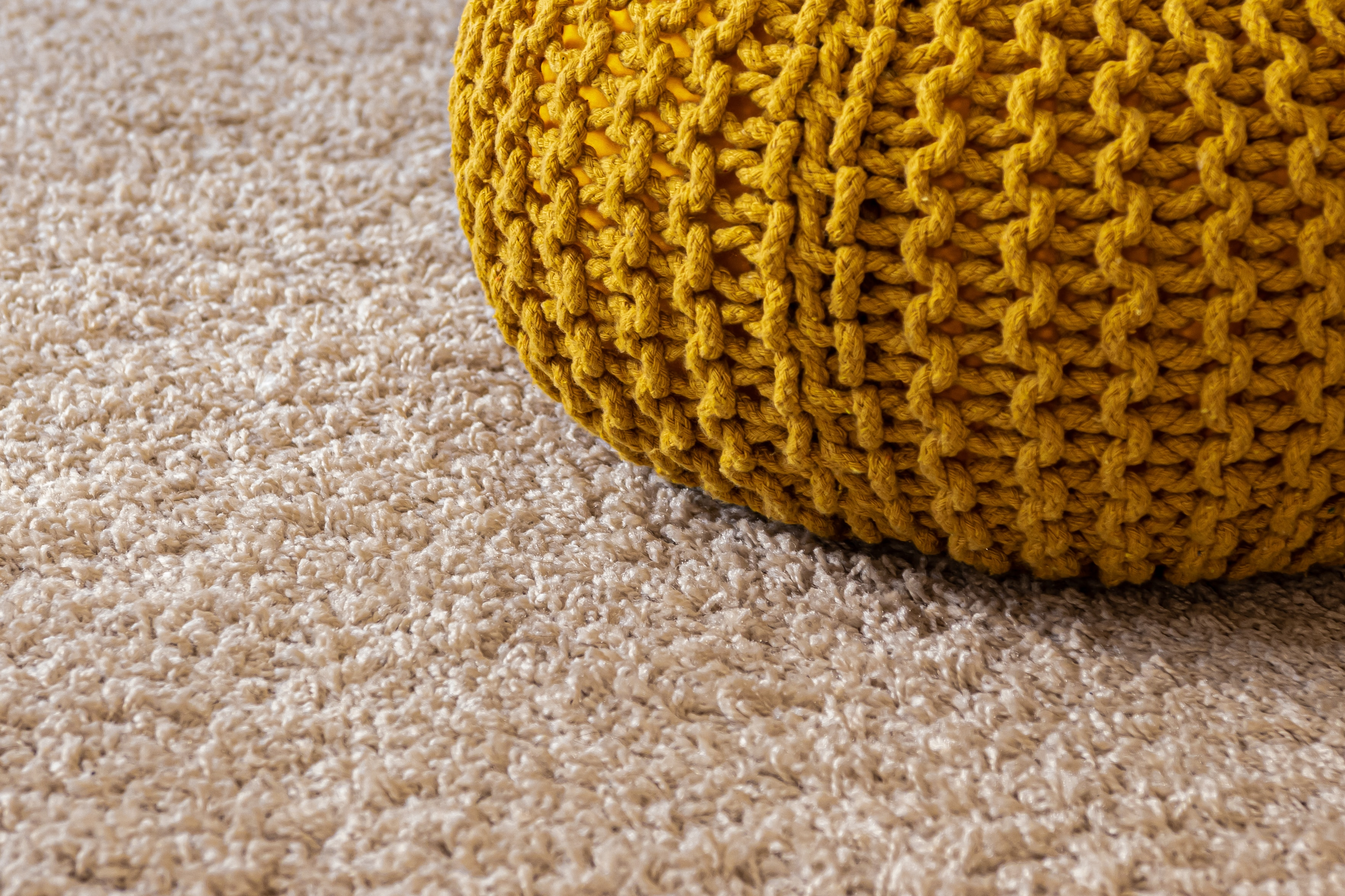 Hiring a Professional Carpet Cleaner